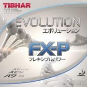 エボリューションFX-P