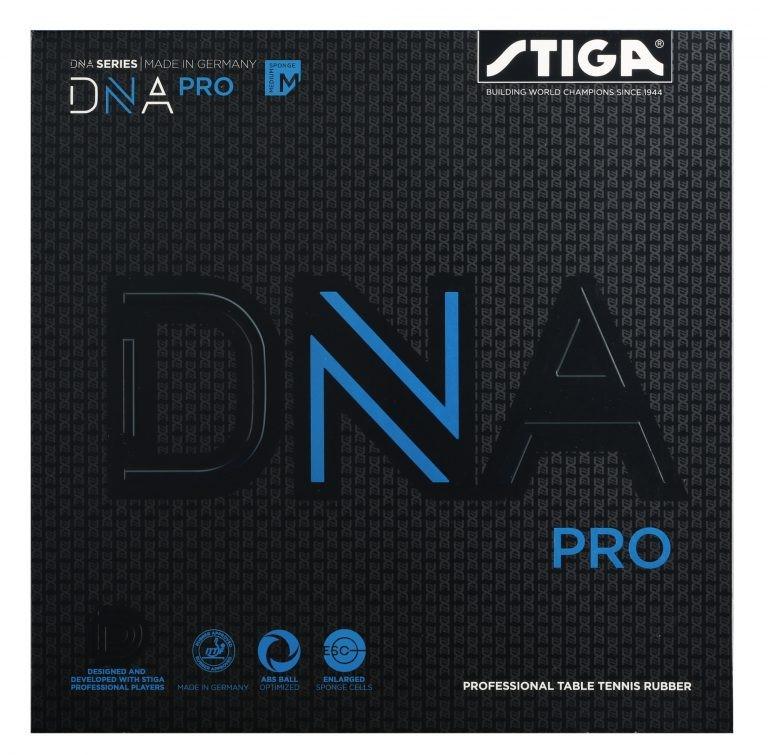 DNAプロM